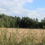 zandstrand waterplas